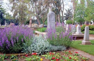 sacto cemetery 1