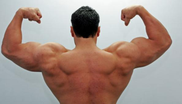 strongman-back-rotator