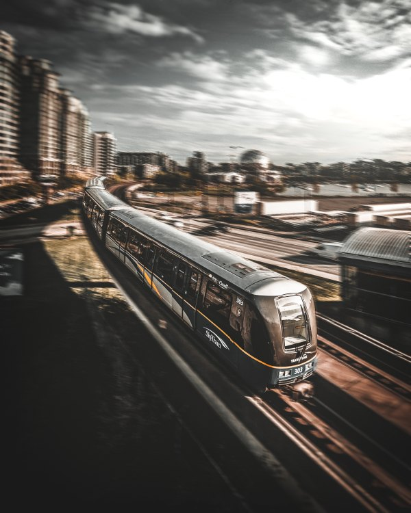 TrainMadoElKhouly.jpg