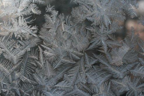 frost-MikeMcgrath